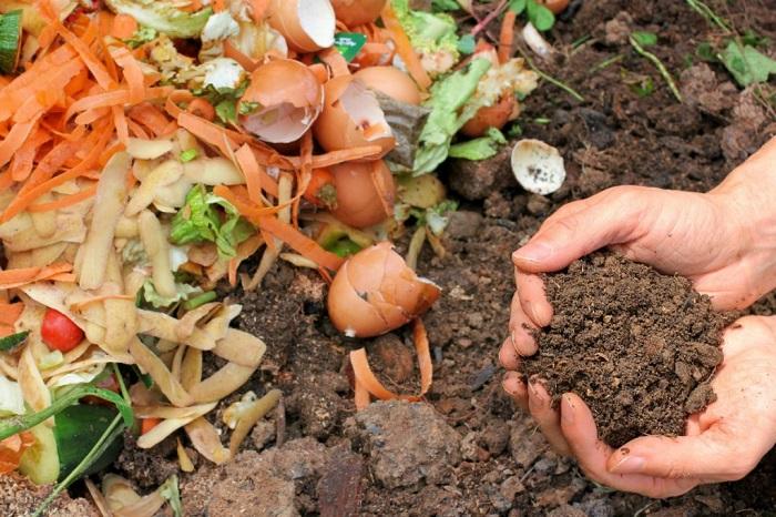 chôn lấp rác thải