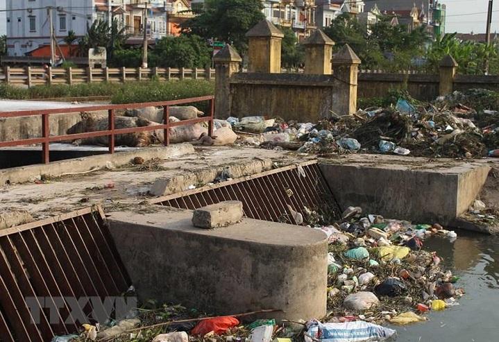 Hình ảnh rác thải